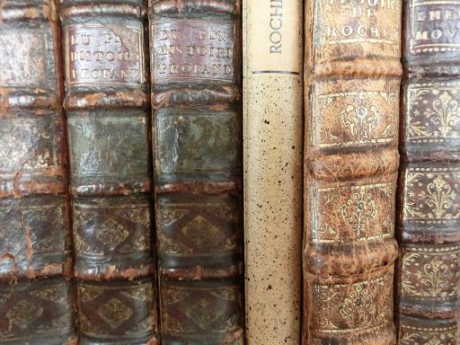 Buchrücken (Symbolbild Lesetipps)
